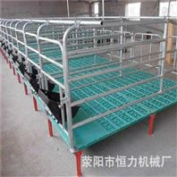 厂家供应热镀锌母猪限位栏 母猪保定栏