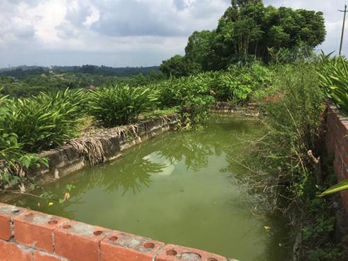 九部门印发关于推进农村生活污水治理的指导意见