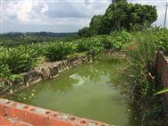 九部門印發關于推進農村生活汙水治理的指導意見