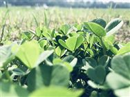 江西省关于对山东瑞科农业装备有限公司等企业及有关补贴产品进行处理的通报