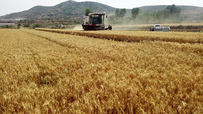 辽宁省2019年农机购置补贴产品投档已开始