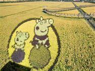 10月1日,《农田建设项目管理办法》开始实施!