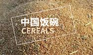 """让农民种粮有收益,""""中国饭碗""""才能端得稳"""