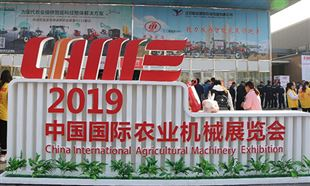 2019国际啪啪社区手机版展(秋季会)综合报道
