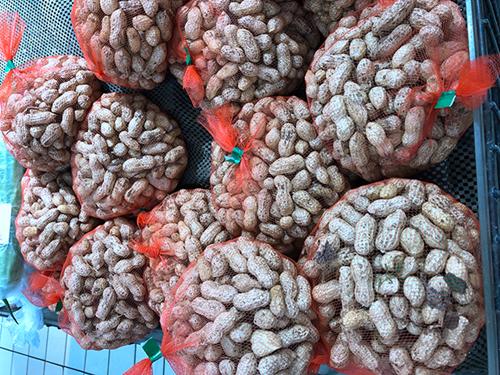 第十七届中国国际农产品交易会达成采购金额381亿元