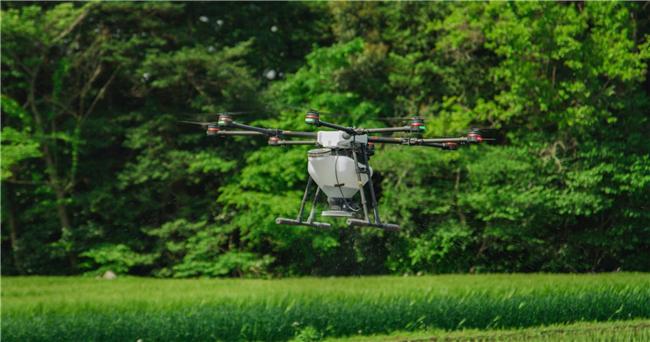 农业农村部办公厅关于印发《2020年农业农村澳门第一城娱乐路线检测发展工作要点》的通知