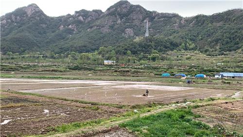 2019年农机畅销榜:种植施肥机械三甲揭榜